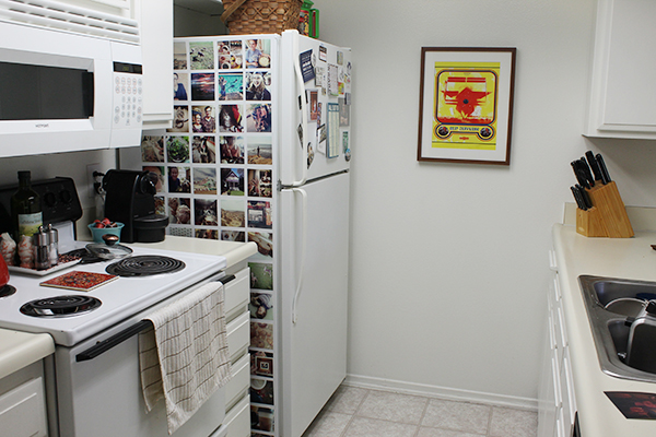 insta_fridge3