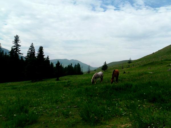 JB_Mongolia07