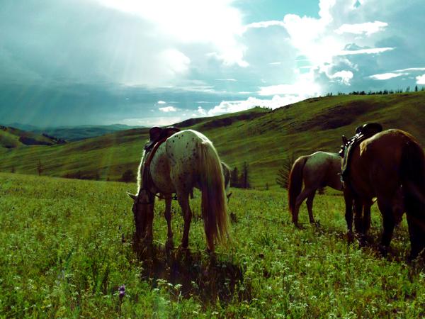 JB_Mongolia15